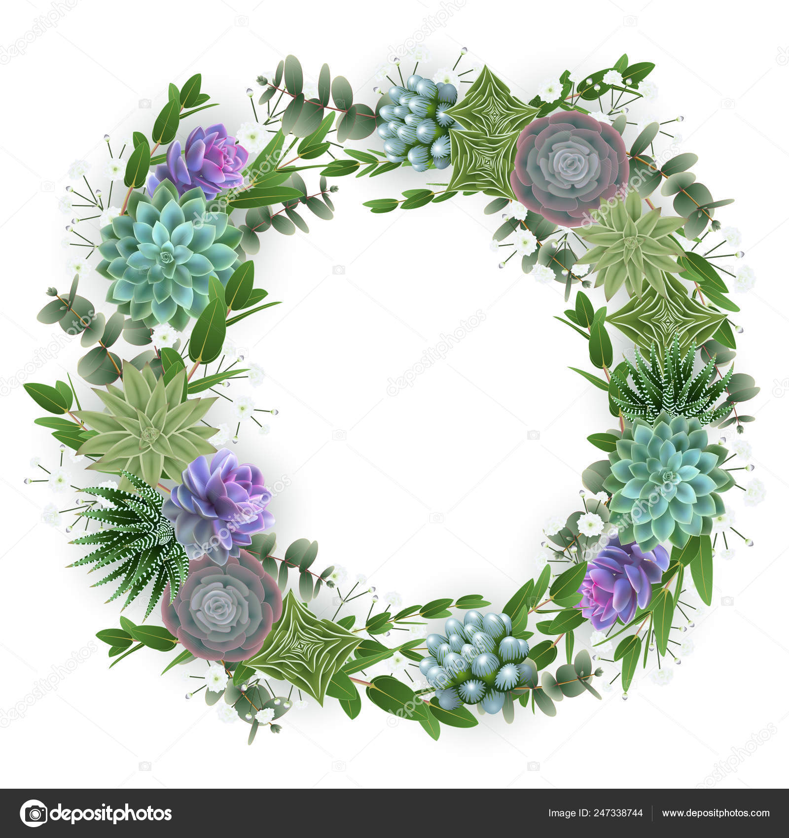 多肉植物 カスミソウの花と分離されたユーカリと花の花輪のイラスト