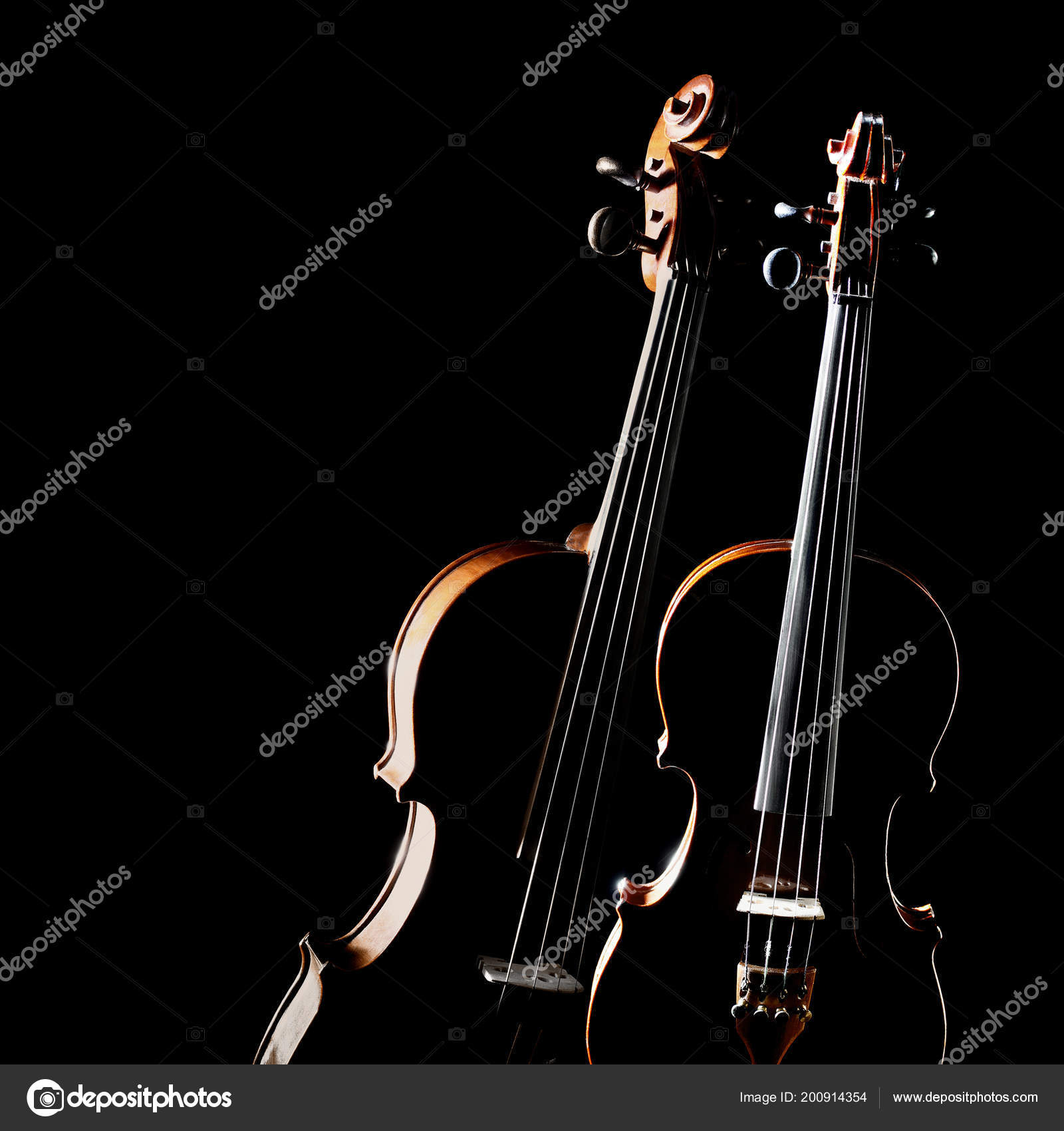 Violin Isolated Duet Two Violins Classical Music Instruments