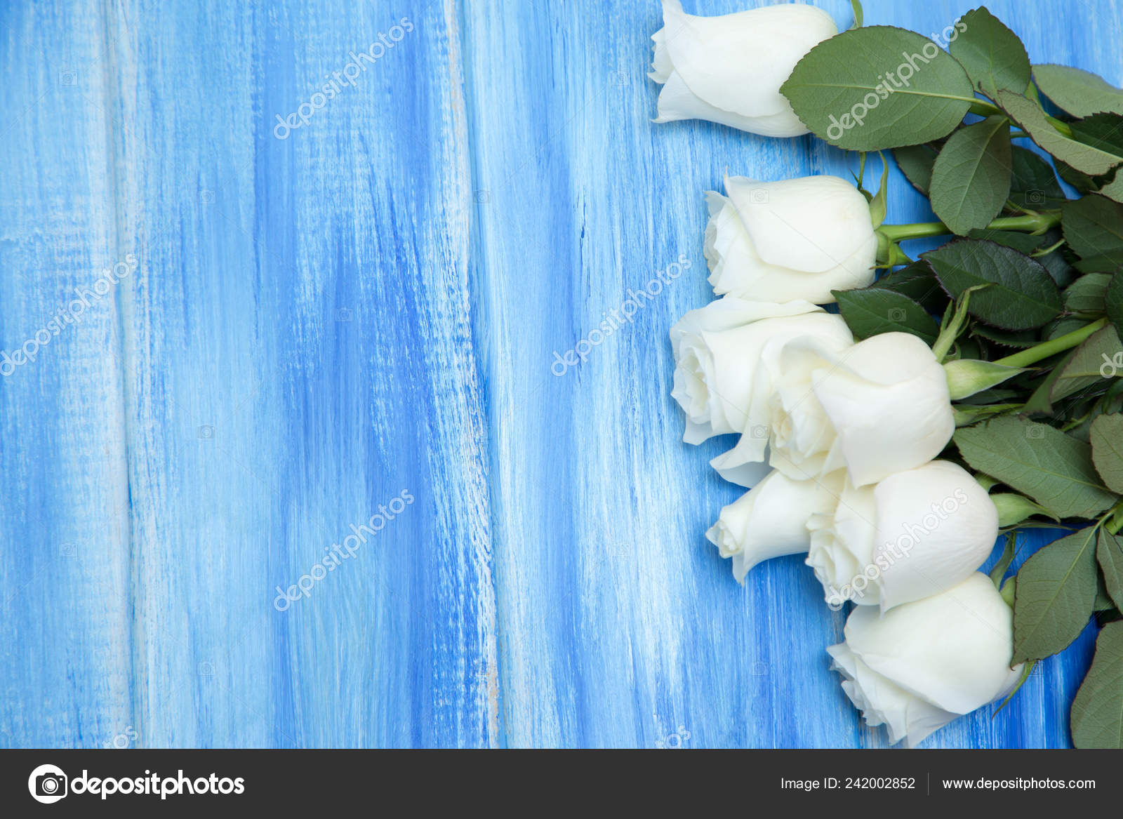 White Rose Bouquet Delicate Roses Wooden Blue Background Place Text Stock Photo Image By C Alwih 242002852