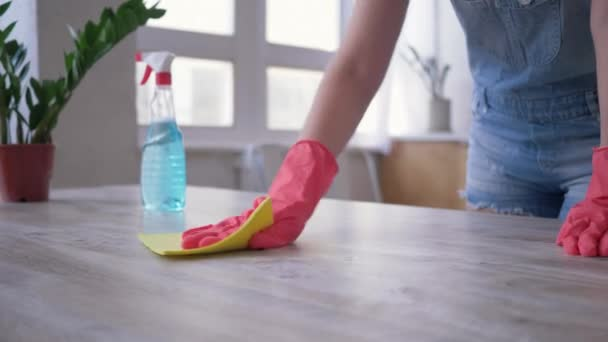 Wohnung putzen, Mädchen in Handschuhen mit Staubwedel und Reinigungstücher Tisch in der Küche