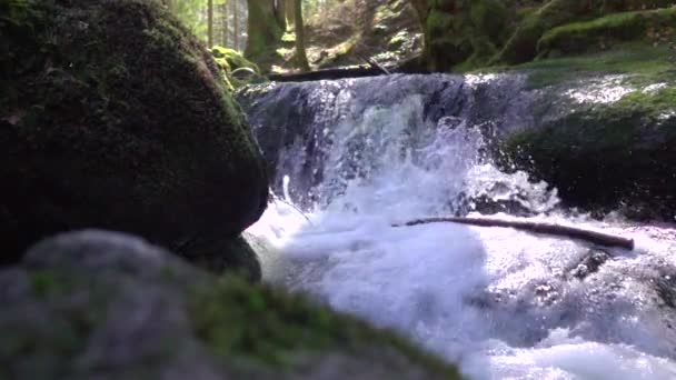 nature stream runs over stones covered with green moss and lot of splashes fresh and pure water flow in Slow motion