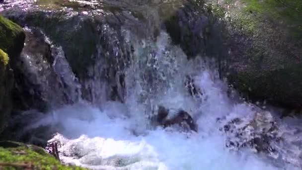 natural cascade runs between large stones covered with green moss and makes splashes fresh and pure water and foam in Slow motion