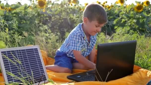 modern gyermekkor, boldog gyermek segítségével napelemes újratöltés laptop háttér mező napraforgó, gyerek néz notebook