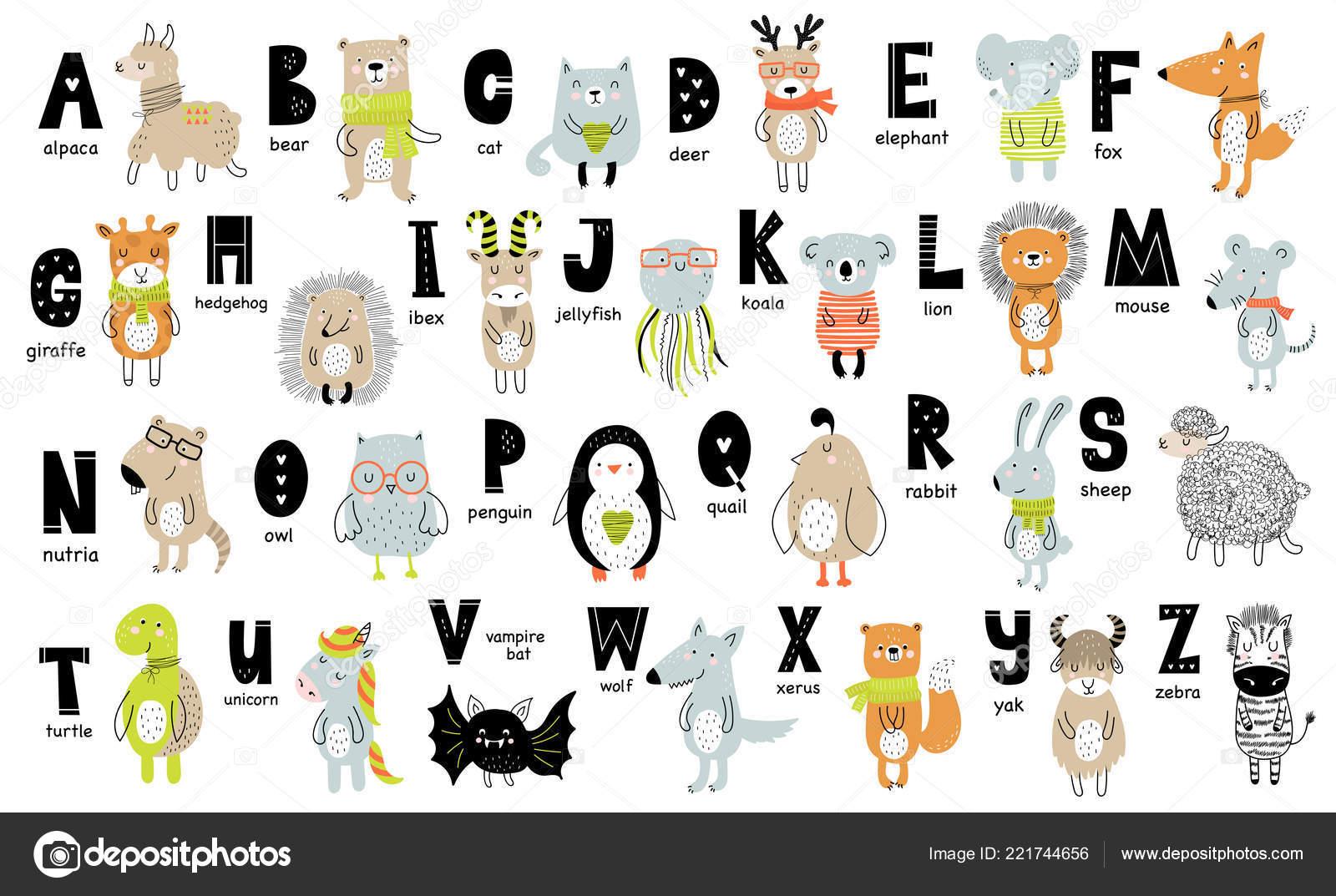 Affiche Vecteur Avec Des Lettres Alphabet Avec Des Animaux
