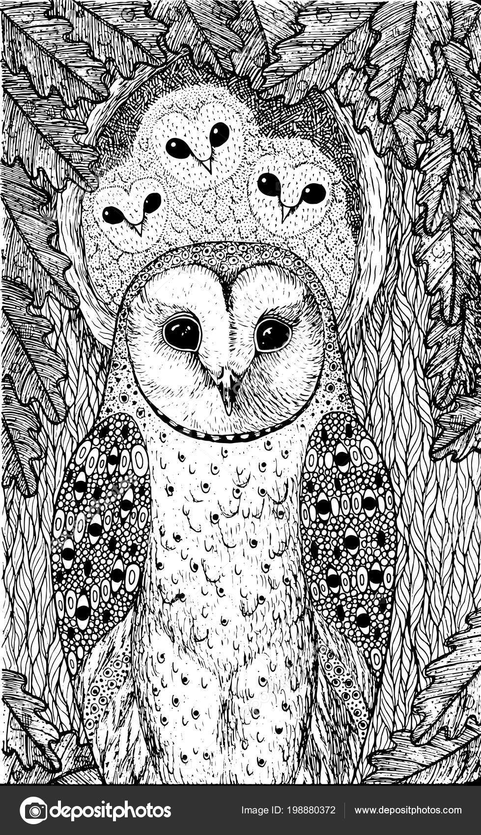 Coloring Page Adults Owls Oak Tree Realistic Ink Graphic Artwork