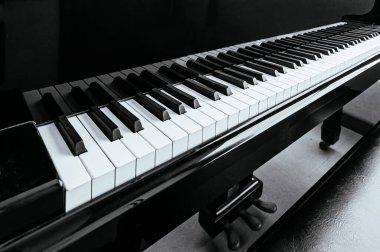 Classical Grand Piano keyboard black and white tone keys details