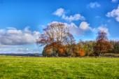 Landscape view of monument area around Stonehenge.HDR. United Kingdom.