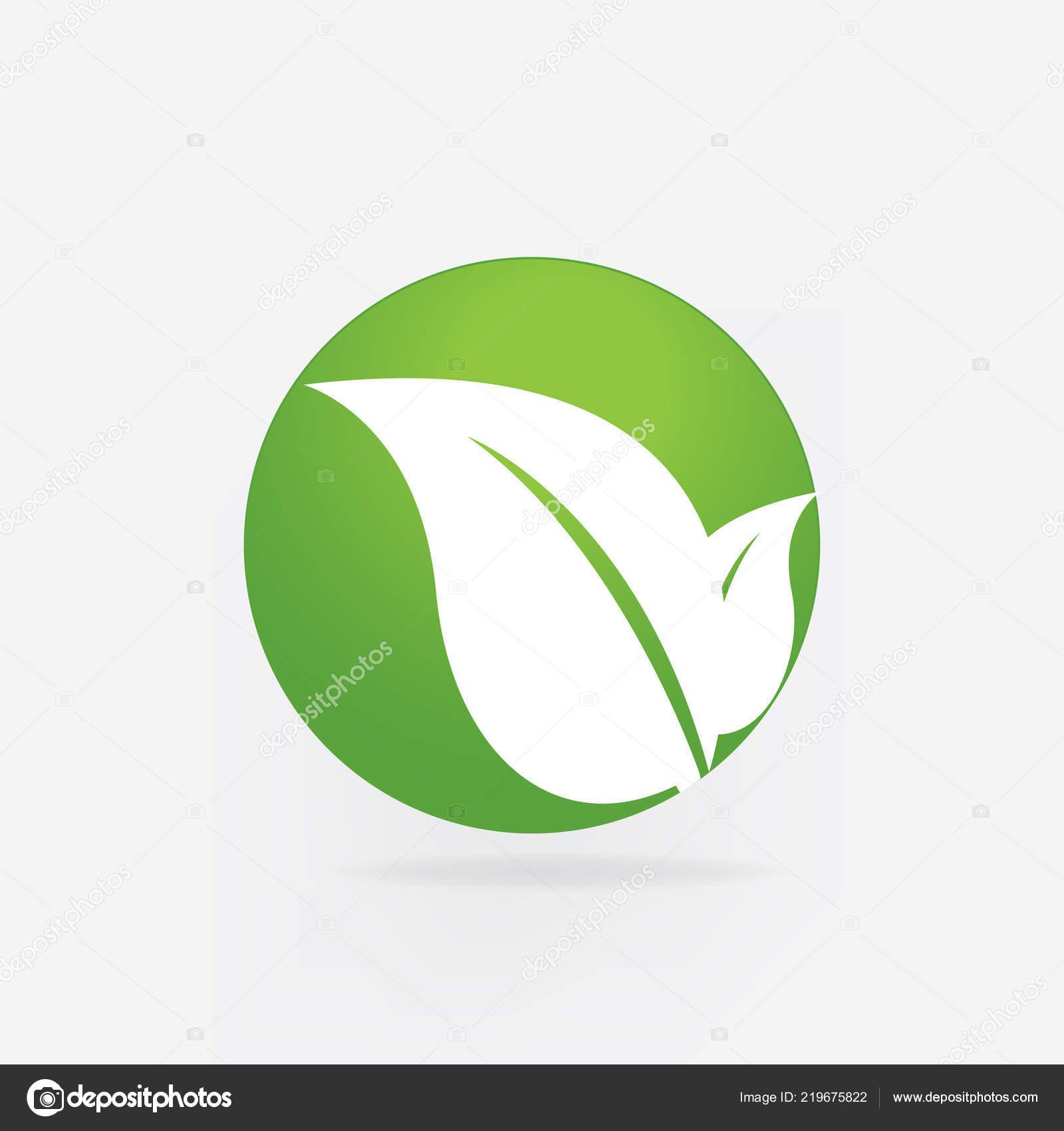 Les Leafs De Logo Image Vectorielle Sante Nature Identite Carte Visite Illustration Stock