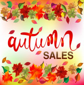 Fotografie Autumn colorful fall leafs colorful season greetings card holidays celebrations welcome fall vector image banner background web render template