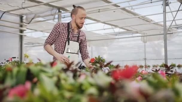 Mladý zemědělec chlap pracuje na zahradě. Člověk používající konev v její kuchyňské zahradě