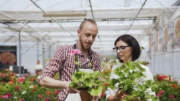 Květinářství mladá vyskladnění květiny od vystrojená obchody a ženské shopper se rozhodne koupit. Velký skleník květin, krásných lidí s přirozeným světlem