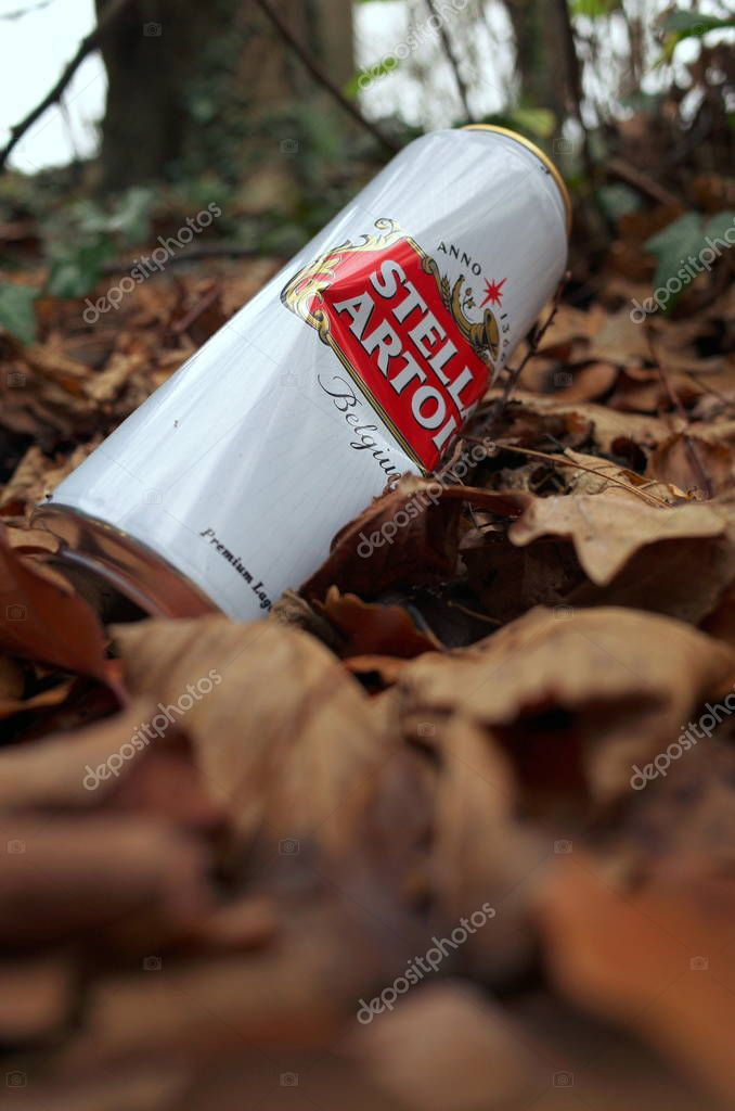 Bracknell, England - December 12, 2018: Discarded can of Stella Artois lager beer on brown leaves with the trees of a forest in the background