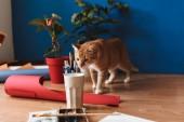 Fotografia Chiuda in su gatto curioso lo sniffing di vetro con gli strumenti di disegno sul pavimento a casa accogliente
