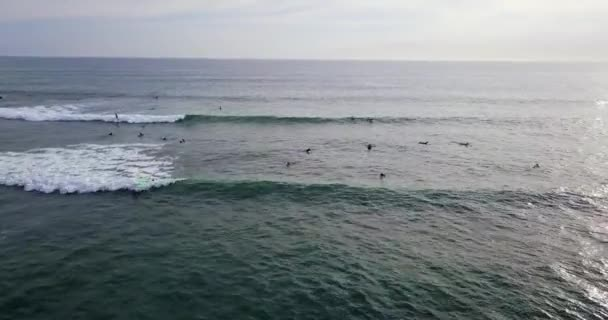 Aerial view at group of surfboards on sea waves