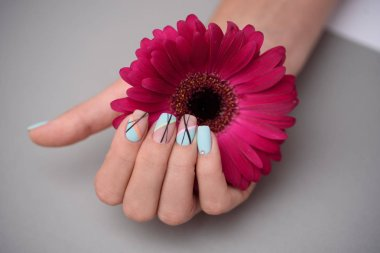 Woman hand with trendy nail art manicure holding gerberas flower on grey background