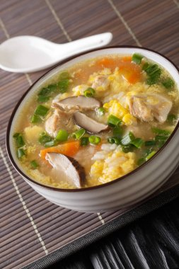 Zosui is a comforting Japanese rice soup cooked in a savory dashi broth with vegetables, eggs, mushrooms, and chicken close-up in a bowl on the table. Vertica