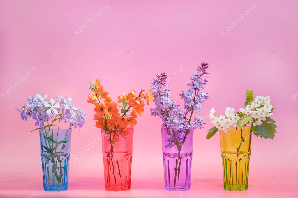 Four identical glass cups: red, green, blue, purple. Spring flowers on a pink background. Close-up