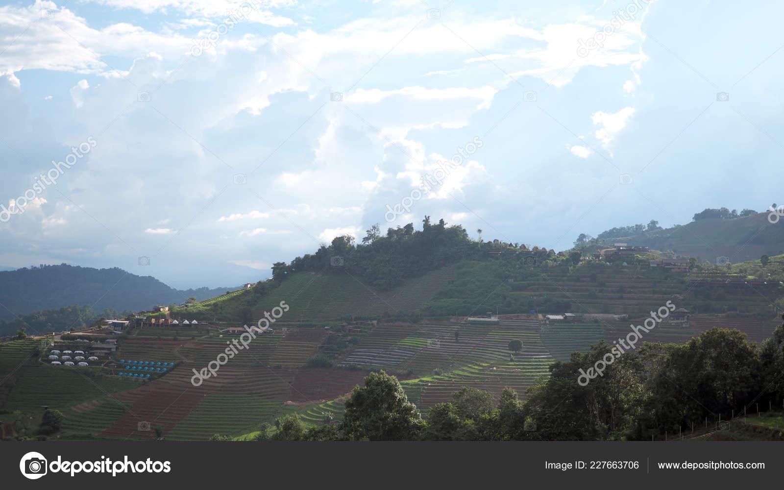 Paso Campo Vista Montaña Terraza Cultivo Foto De Stock