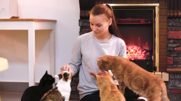 Frau mit niedlichen Katze in der Nähe von Kamin ausruhen. viele Katzen. Single-Frau-junges Mädchen-Katzen-Dame