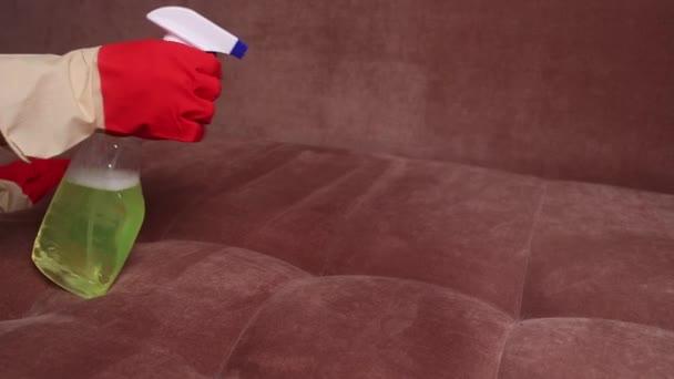 schöne junge Frau lächelt mit Pinsel und Spray beim Putzen der Couch im Haus.