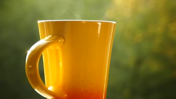 Drink delicious tea in nature. A mug of hot tea at sunset. There is steam from black or green tea. Hand take a cup.