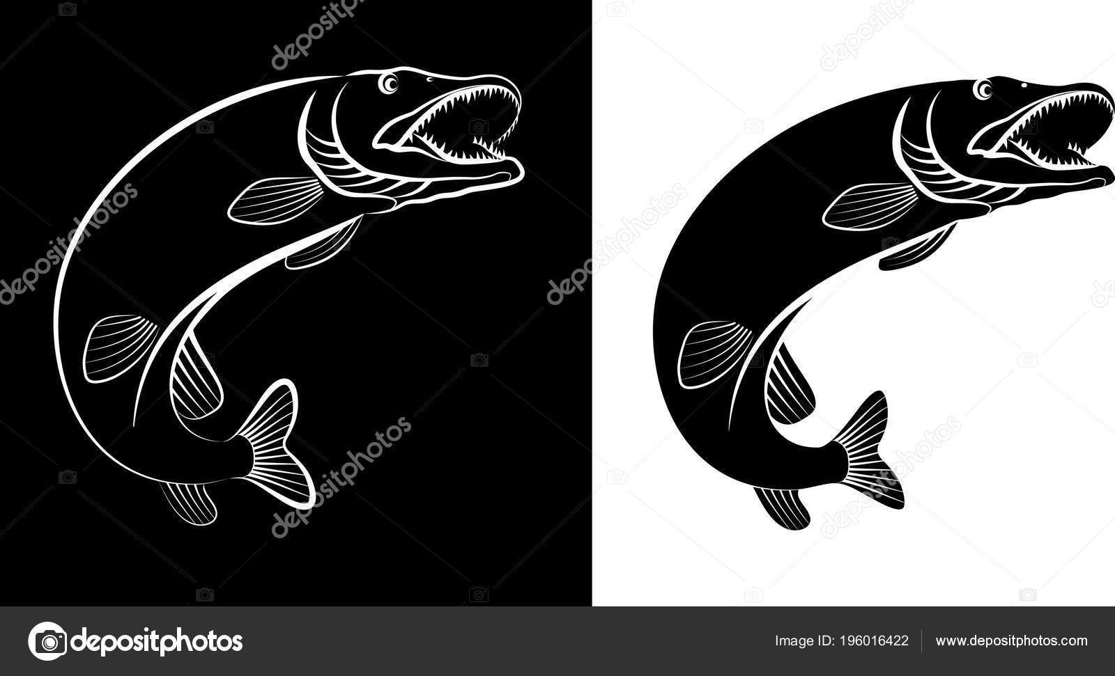 パイクの魚 クリップ アート イラスト — ストックベクター © mtmmarek