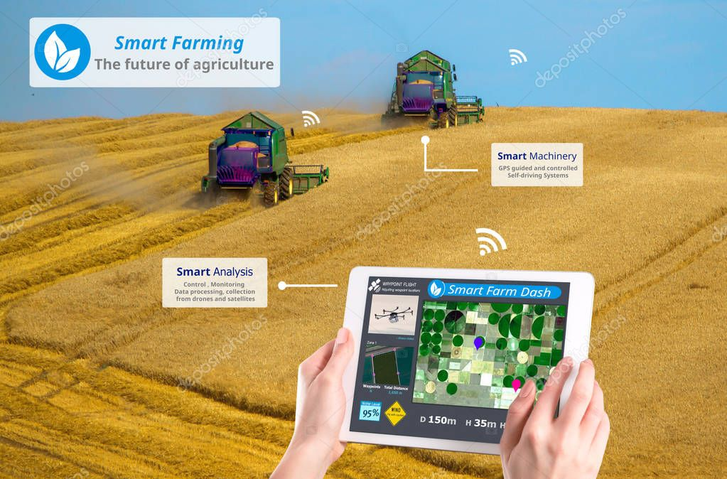 Smart farming, Hi-Tech Agriculture concep