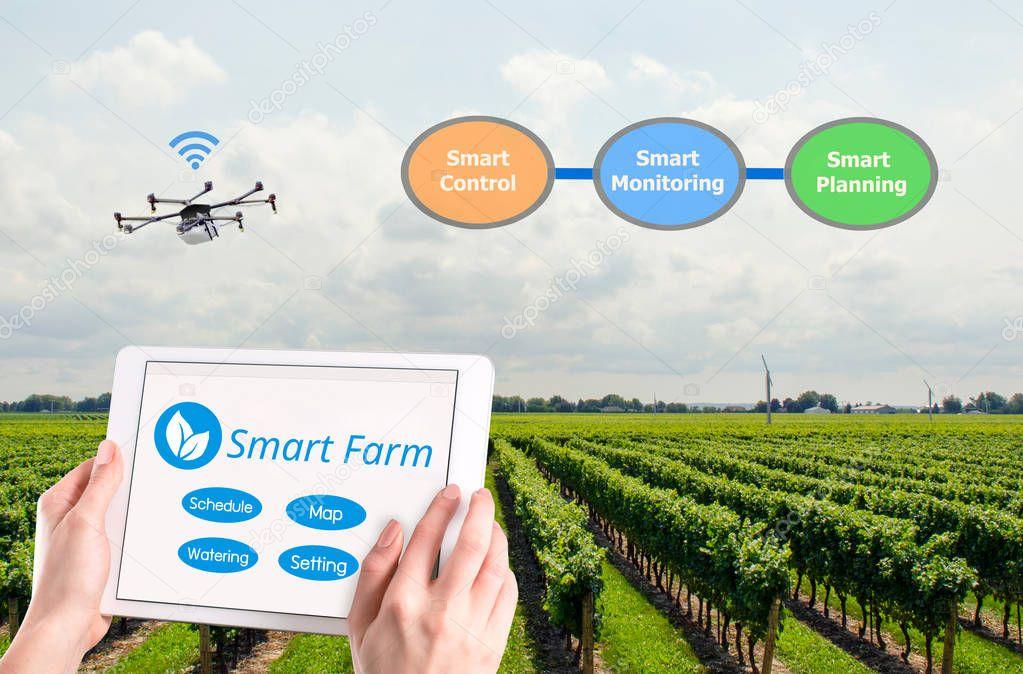 Smart farming, Hi-Tech Agriculture conceptual picture