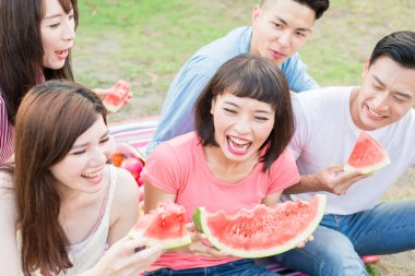 people eating watermelon happily and enjoying picnic