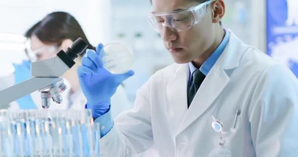 Asiatischer Wissenschaftler nimmt Petrischale