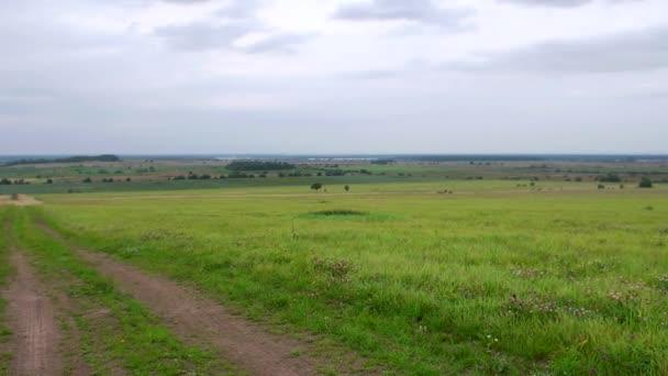 vesnice cesta mezi zelenými poli a luk