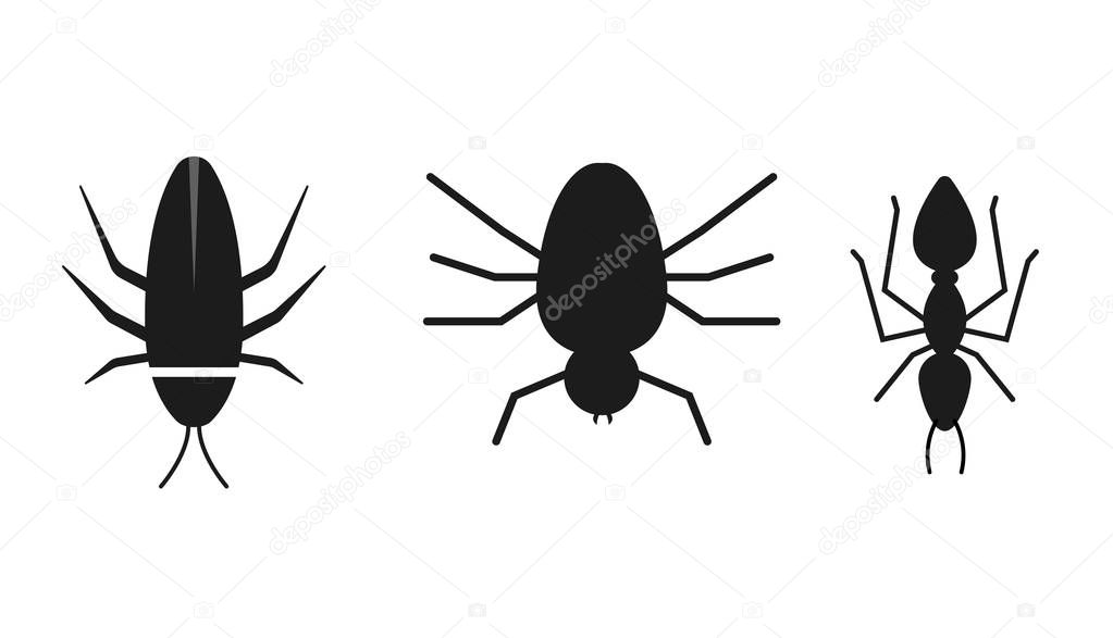 Insects insolated vector illustration