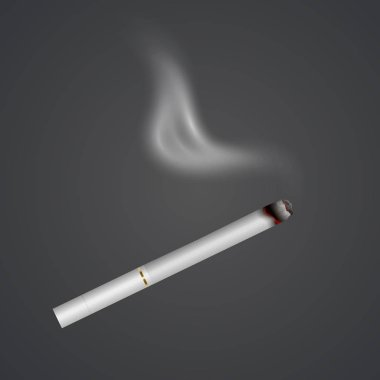 Realistic cigarette with smoke, fire isolated on background. Tobacco. Narcotic problem concept, Vector Eps 10 illustration