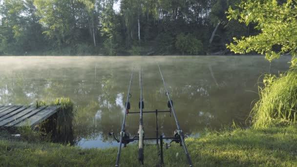 Kaprové pruty na rybník