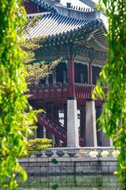 Gyeongbokgung Palace with Natural Frame