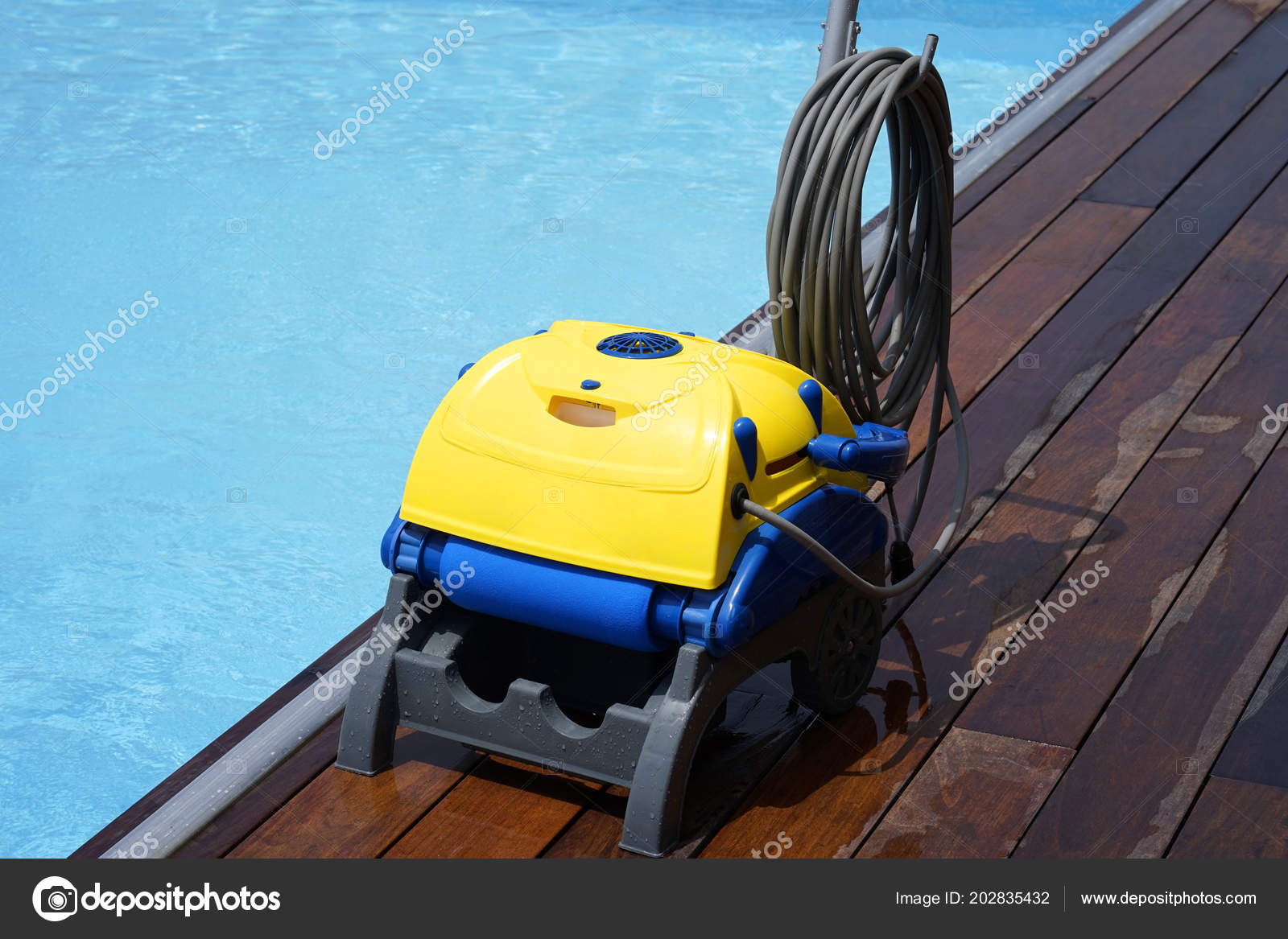 Pool Cleaner His Work Cleaning Robot Cleaning Botton ...