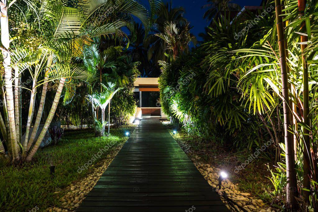 Night lighting in tropical garden