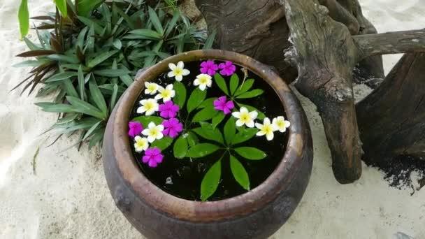 Mnoho bílé a fialové květy keře na vodu ve váze. Japonská Zenová zahrada pro odpočinek rovnováhu a harmonii spiritualita nebo wellness.