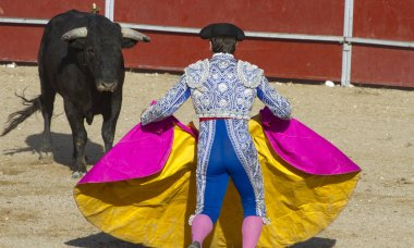 bullfight, traditional Spanish party where a matador fighting a bull