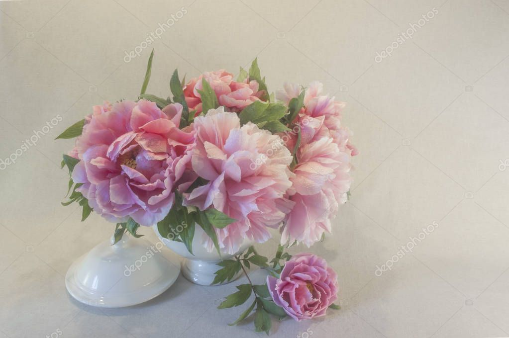 Pink Peonies in a White Soup Bowl Against a Soft Colored Backgroun