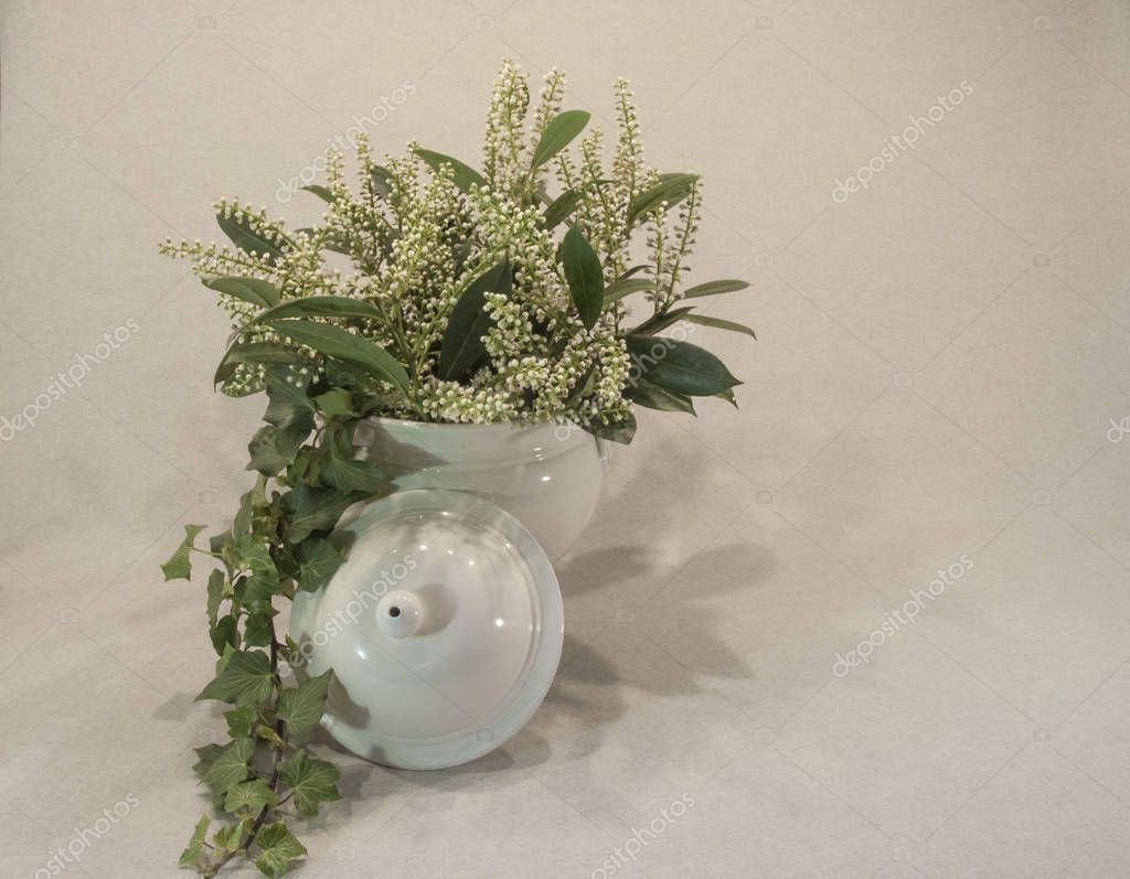 White Flowers and Green Leaves Pouring Out of a White Soup Bowl on an Ivory Background
