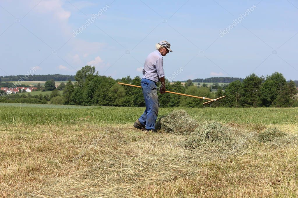 on a very sunny day in june in south germany you see hay, haying tools and farmer in blue trousers working hard to get job done before end of day