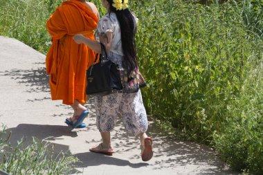 Haziran ayında Güney Almanya çok güneşli bir günde tek veya çift yeşil parkta bir yürüyüş üzerinde Tibet keşiş bakın