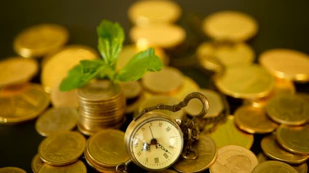 Идеи для бизнеса финансов бизнес планы продажи елок