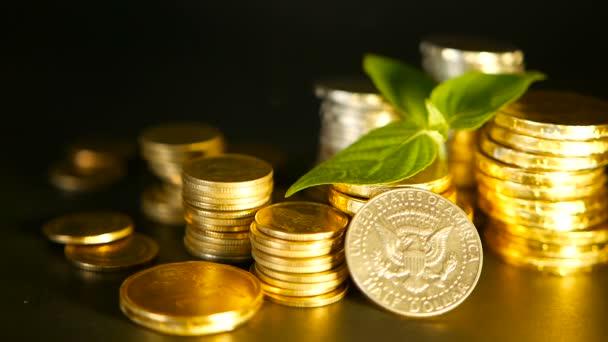 Goldmünzen und grünes Keimblatt auf schwarzem Hintergrund. Erfolg von Finanzgeschäften, Hypotheken- und Bankkonzepten
