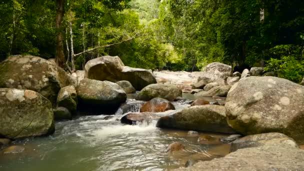 Scenérie deštného pralesa a řeka s kameny. Hluboko tropický prales. Džungle se stromy nad rychle rocky proudu