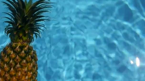 Ananász úszó a kék víz a medence. Egészséges nyers bioélelmiszerek. Lédús gyümölcs. Egzotikus trópusi háttér