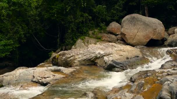 Paesaggio della foresta pluviale e fiume con le rocce. Foresta tropicale profondo. Giungla con alberi sopra il flusso veloce roccioso.