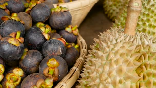 Mixed season tropical sweet juicy Fruits, local Thailand market. Large Monthong Durian, hard skin covered in sharp points and Mangosteen, King and Queen, most delicious antioxidant fresh exotic fruits
