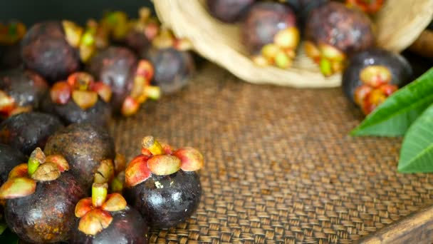 Top view of fresh delicious harvested mangosteens on wooden table. Thai organic purple fruit in the basket.